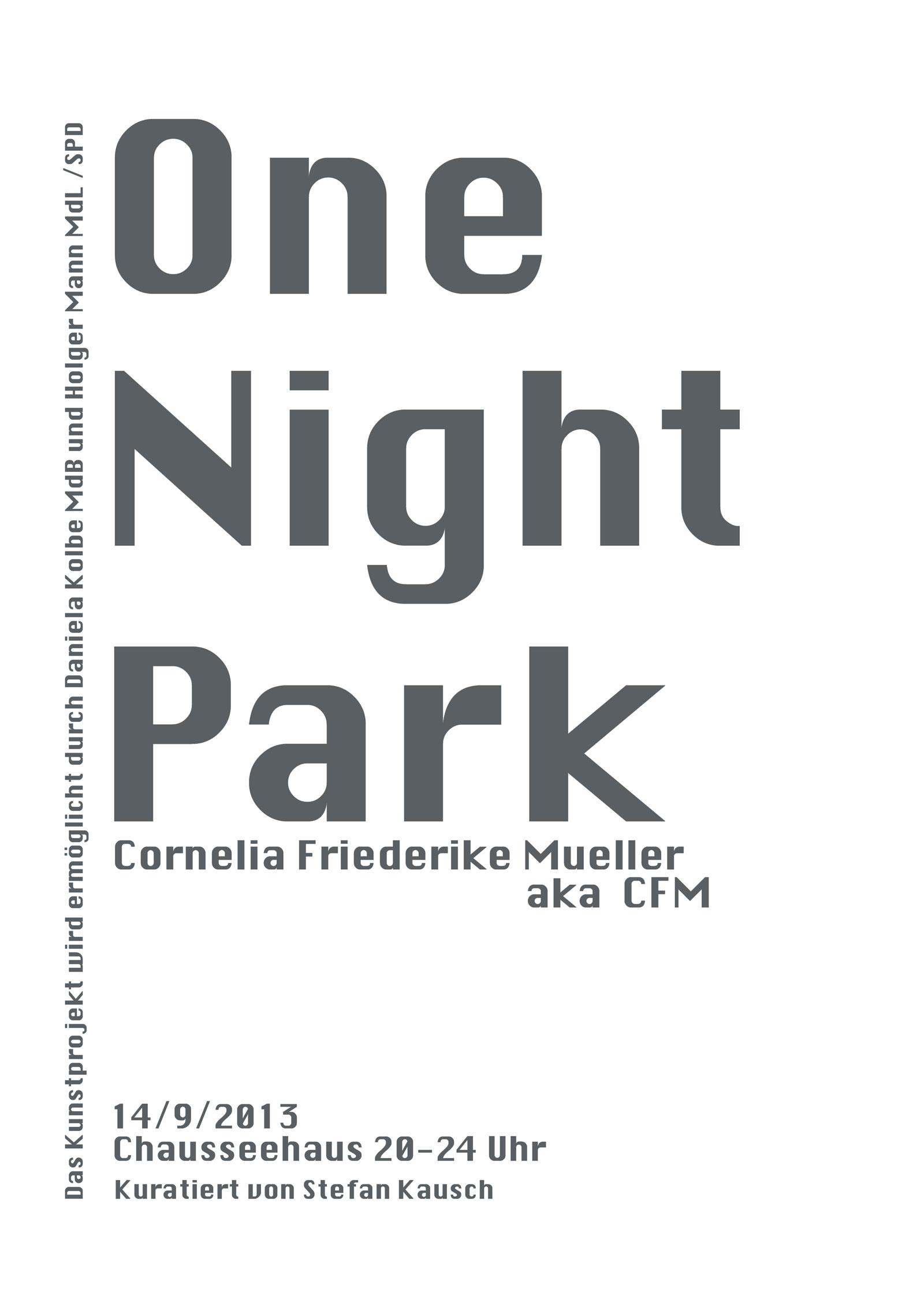 OneNightPark_OK4